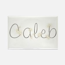 Caleb Spark Rectangle Magnet