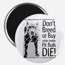 """Pit Bulls: Don't Breed 2.25"""" Magnet (100 pack)"""