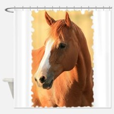 Horse portrait SE Shower Curtain