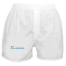 Unique Scuba dive Boxer Shorts