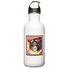 Berner Xmas, frame 3 Water Bottle