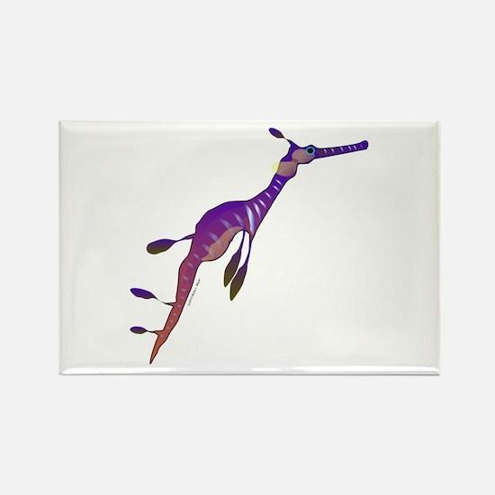 Weedy Sea Dragon fish Rectangle Magnet