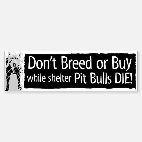 Pit Bull Don't Breed or Buy Bumper Bumper Bumper Sticker