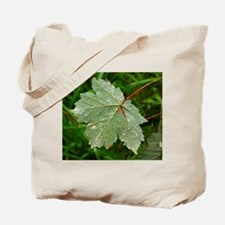 Forest Morning Tote Bag