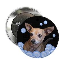 "Chihuahua Bubble Bath 2.25"" Button (100 pack)"