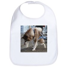 Alaskan Malamute Power Bib