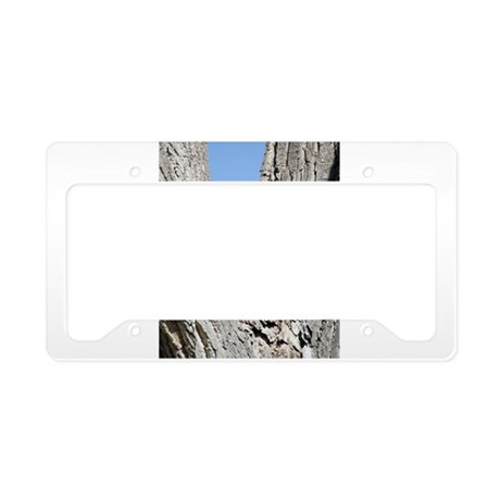 Great Horned Owl and Baby License Plate Holder