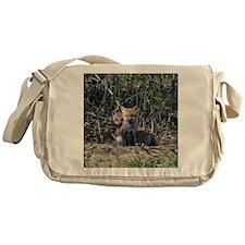 Red Fox kits Messenger Bag