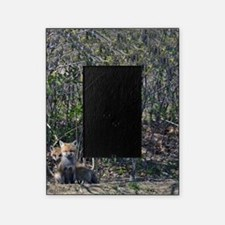2 baby fox 9x12 print Picture Frame