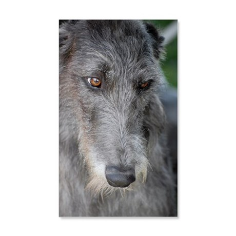 Irish Wolfhound 20x12 Wall Decal