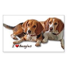 Two Beagles Decal