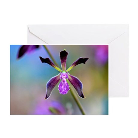 Impressionist Orchid Greeting Cards (Pk of 20)