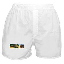 Farmland Triple Print Boxer Shorts