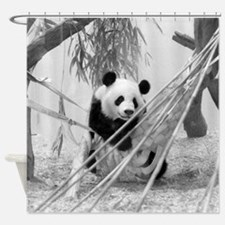 Panda (Shower Curtain)