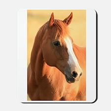 Horse portrait Mousepad