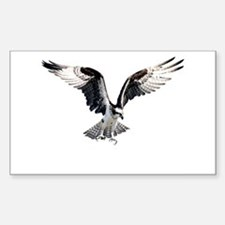 Hunting osprey Rectangle Decal