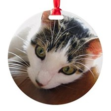 Green-Eyed Cat Face Whiskers Ornament