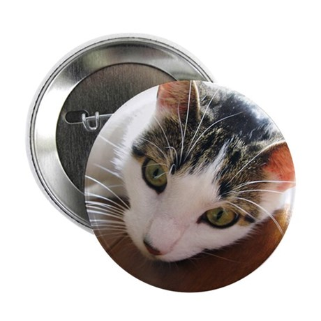 "Green-Eyed Cat Face Whiskers 2.25"" Button (10"