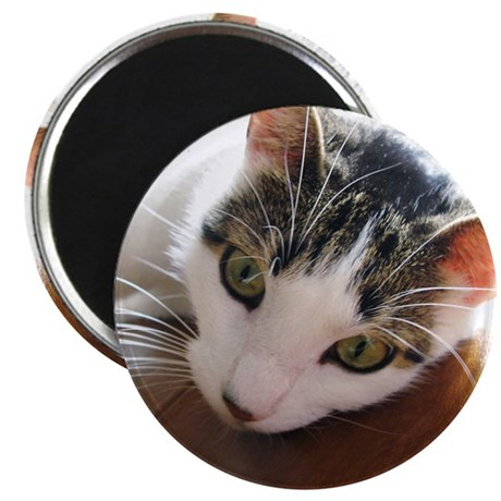 Green-Eyed Cat Face Whiskers Magnet