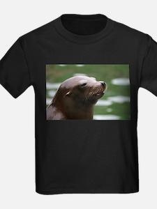 Sea lion T