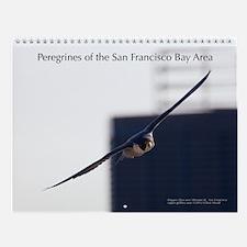 Raptor Calendar #7 - Peregrines of SF Bay Area