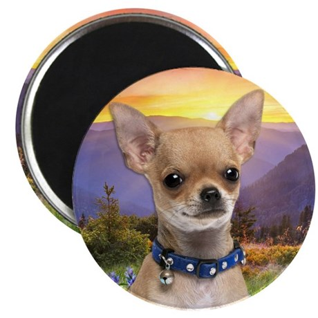 """Chihuahua Meadow 2.25"""" Magnet (100 pack)"""