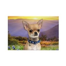 Chihuahua Meadow Rectangle Magnet