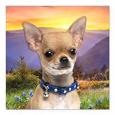 "Chihuahua Meadow Square Car Magnet 3"" x 3"""