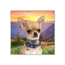 "Chihuahua Meadow Square Sticker 3"" x 3"""