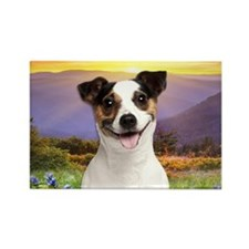 Jack Russell Meadow Rectangle Magnet