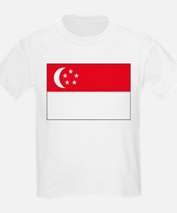 Singapore Flag Picture Kids T-Shirt