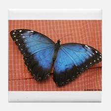 Big Blue Butterfly Tile Coaster