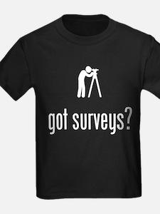 Land Surveyor T
