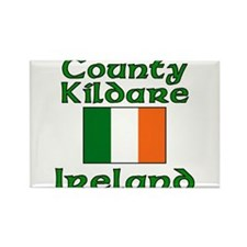 Funny Guiness Rectangle Magnet (100 pack)