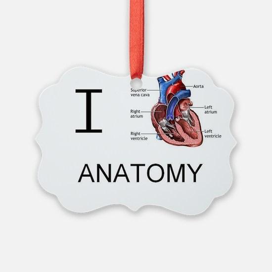 Cute Anatomy Ornament