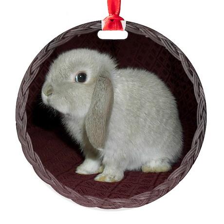 Little Lop Bunny Round Ornament