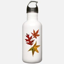 Beautiful Leaves of Fall Water Bottle