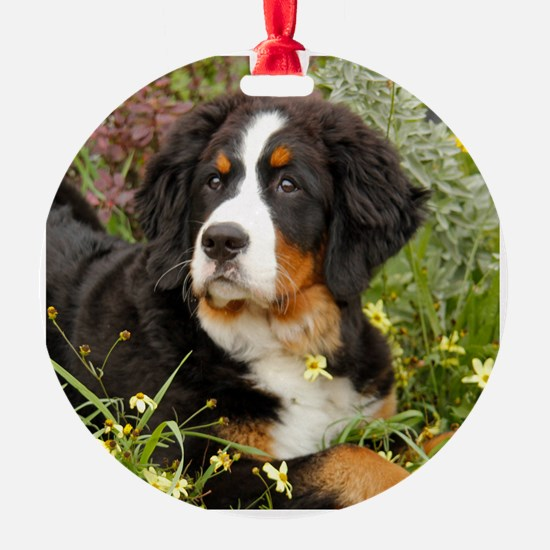 Tory BMD 2012 Ornament