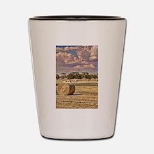 Southfork Ranch DSC_6276.jpg Shot Glass