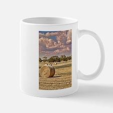 Southfork Ranch DSC_6276.jpg Mug