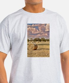 Southfork Ranch DSC_6276.jpg T-Shirt