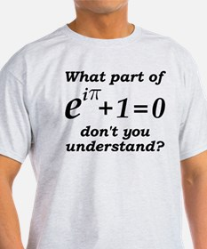 Don't Understand Euler's Equation T-Shirt