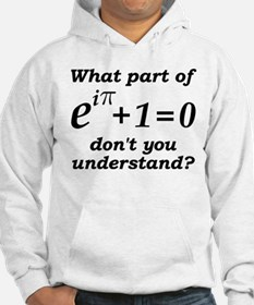Don't Understand Euler's Equation Hoodie