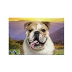 Bulldog Meadow Rectangle Magnet (100 pack)