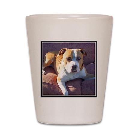 Pitbull Dog Shot Glass