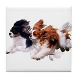 King charles Drink Coasters