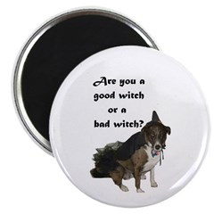 ARE YOU A GOOD WITCH? Magnet