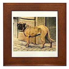 Bullmastiff Illustration Framed Tile