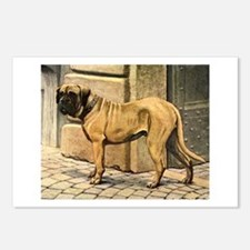 Bullmastiff Illustration Postcards (Package of 8)