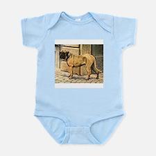 Bullmastiff Illustration Infant Creeper